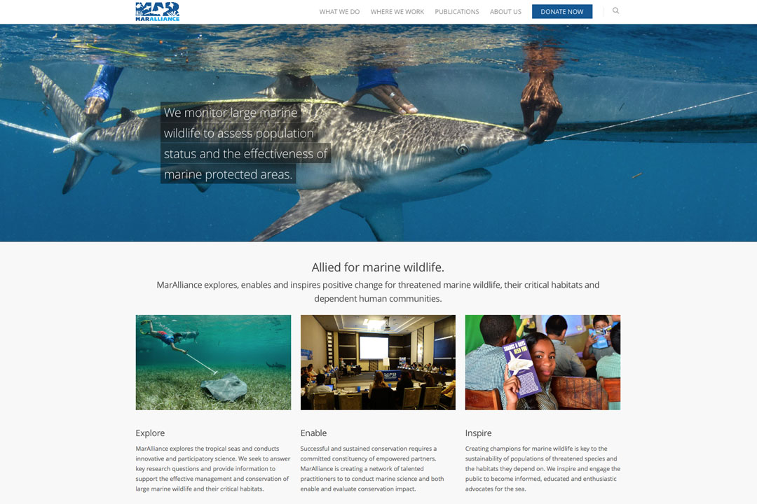 Website for MarAlliance: marine research and conservation.